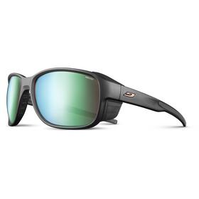 Julbo Montebianco 2 Reactiv All Around 2-3 Sunglasses, czarny/zielony